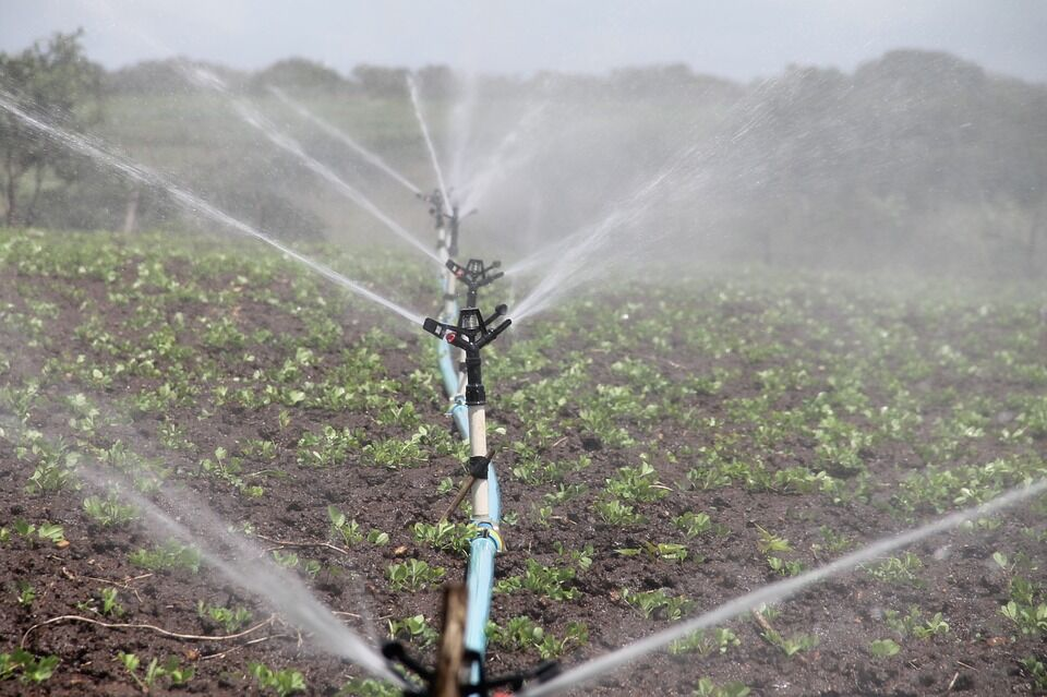 Two Water Saving Methods of Irrigation With Advantages